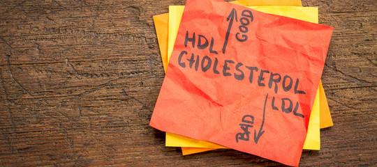 Come viaggia il colesterolo nel sangue?