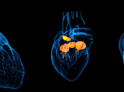Quanto è grave lo scompenso cardiaco