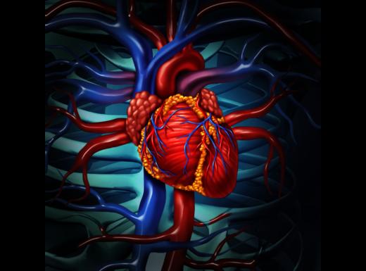 """Quando l'infarto è """"falso"""""""