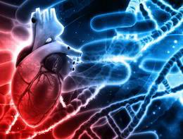 Le cellule staminali, nuova frontiera per affrontare la fibrillazione atriale