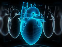 """Funziona il cuore artificiale """"senza fili"""""""