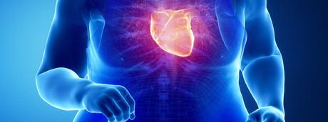 """Nell'obeso il grasso intorno al cuore diventa """"cattivo"""""""