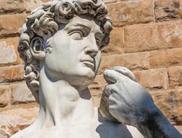 Le statue di Michelangelo modello per la cardiologia