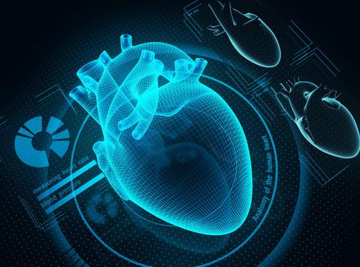 """Allo studio """"gemello"""" digitale del cuore, per scoprire come prevenire l'infarto e valutare l'efficacia delle cure"""
